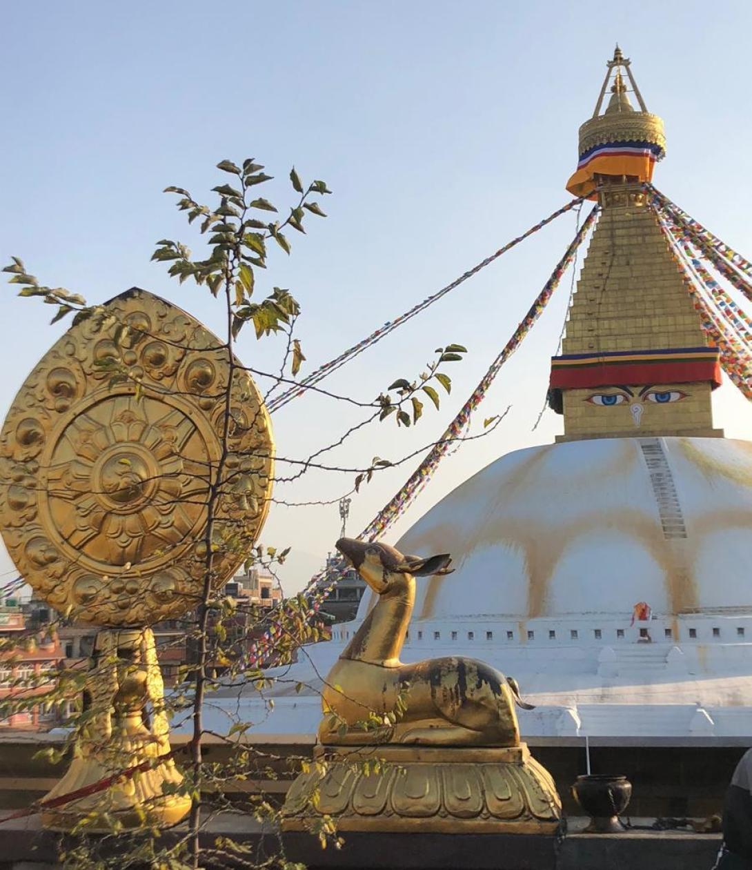 Beth S in Nepal